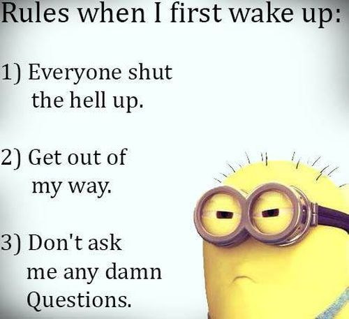 Morning Quotes Funny Pictures: 73 Best Funny Images On Pinterest