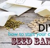 DIY: How to Start Your Own Seed Bank | Inhabitat - Sustainable Design Innovation, Eco Architecture, Green Building