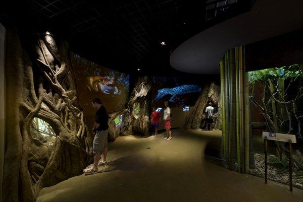 Foyer Luxury Zoo : Best exhibit images on pinterest the zoo zoos and museums