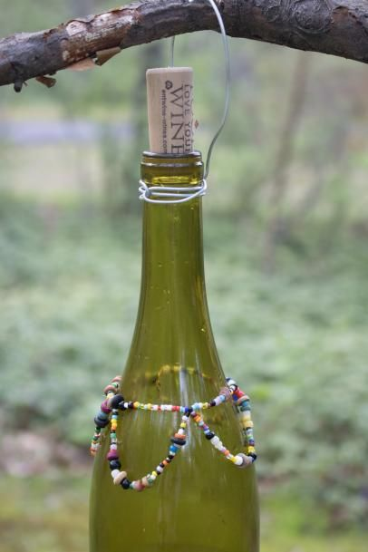 DIY Wasp Catcher Made From a Wine Bottle