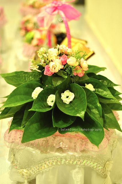 Best images about paan decoration on pinterest