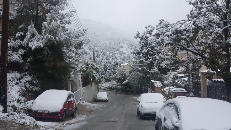 29/12/2016. Το ''Πανόραμα'' χιονισμένο.