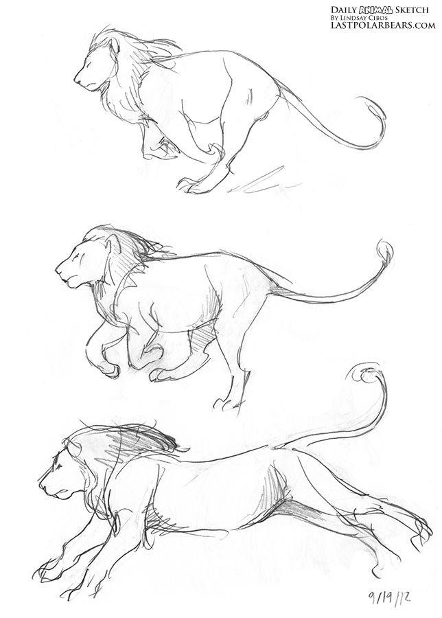 Daily_Animal_Sketch_118