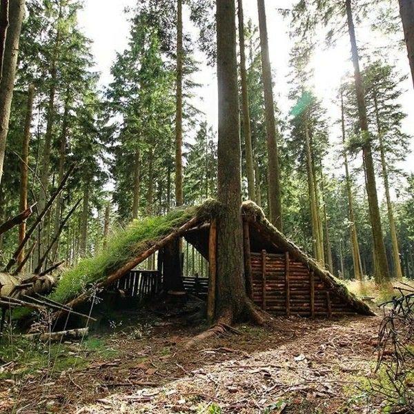 Лесные шалаши фото