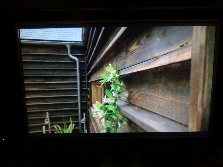 from Grand Designs show, IOW bungalow. This is larch that they burnt to get the resins to form a natural seal so no need to paint. I love the effect and also the way they've fitted it