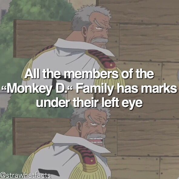 One piece facts