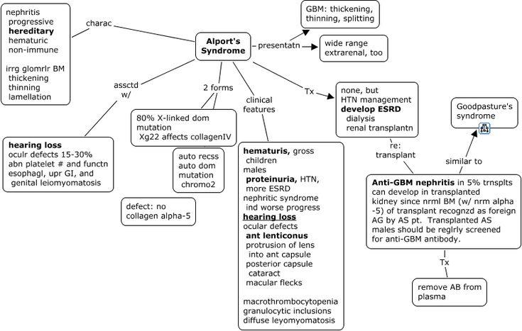 alport syndrome - Google Search