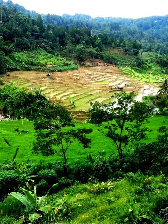 Sentul, West Java, Indonesia