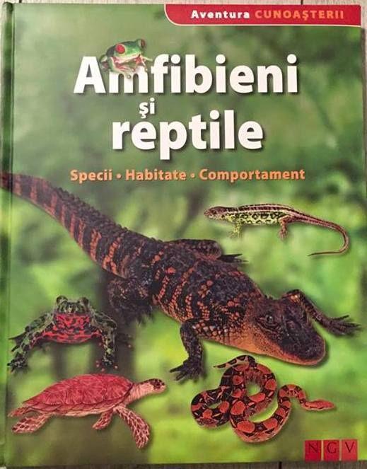 Amfibieni si reptile - Aventura cunoasterii; Varsta: 6+; Cat sunt de periculosi crocodilii si serpii? Cum se reproduc salamandrele, broastele si saurienii? Aceasta enciclopedie ne ofera raspunsuri. Peste 4400 de specii cunoscute de amfibieni populeaza intreaga planeta, iar reptilele sunt diferentiate in peste 6000 de specii. Speciile prezentate in aceasta carte sunt descrise pe larg: denumire stiintifica, morfologie, hrana, mod de reproducere si habitat.