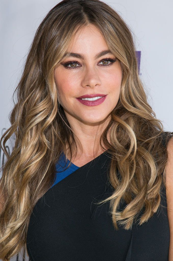 hair styles with beard 25 best ideas about sofia vergara on 6363