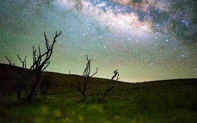 Incredible Shot Of Milky Way Galaxy