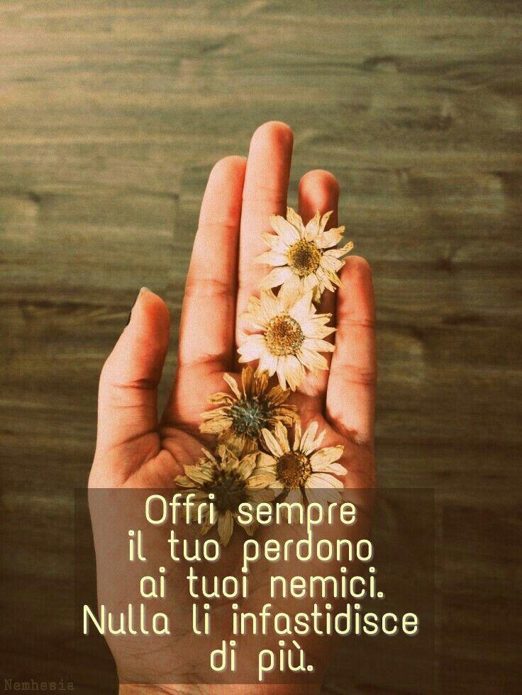 Offri sempre il tuo perdono ai tuoi nemici. Nulla li infastidisce di più.  (Oscar Wilde). #aforismi #citazioni #frasicelebri #parole #pensieri #donna #poesia #amore #dolore #gioia #sentimenti #felicità #tristezza #delicato #perdono