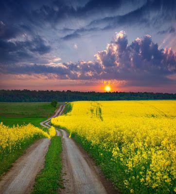 12 fotos de paisajes naturales que tienes que ver para creer | Banco de Imágenes, Fotos y Postales...