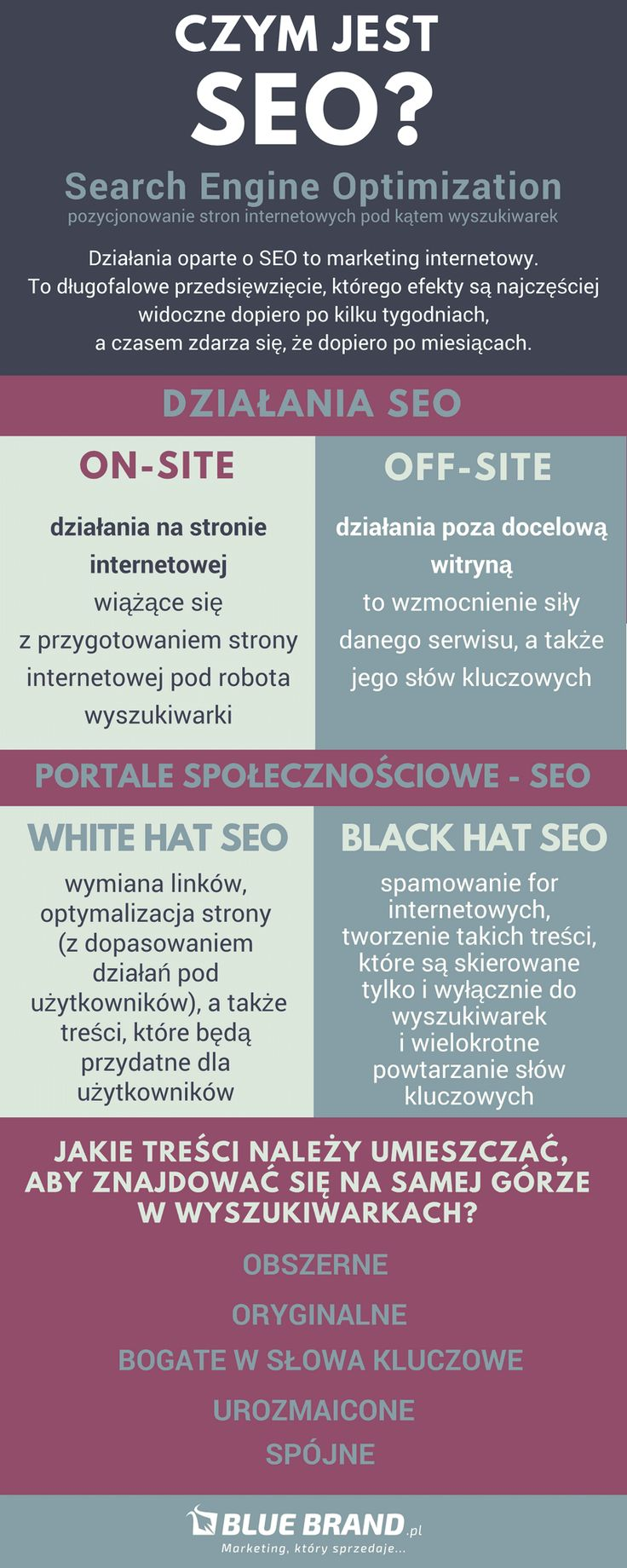 czym jest seo, Search Engine Optimazion, BlueBrand_pl, agencja marketingowa Warszawa