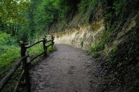 Zuid-Limburg wandeling lang de Geul