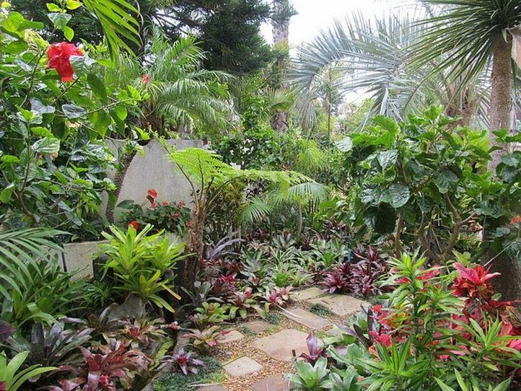 M s de 25 ideas incre bles sobre jardines tropicales en for Casas diseno jardines tropicales