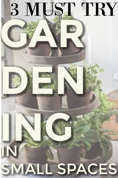 Gardening For Beginners How To Garden When Apartment Living