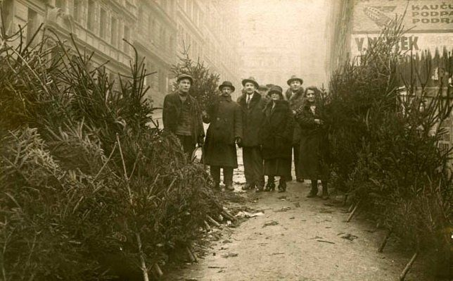 Sales of Christmas trees – 1920