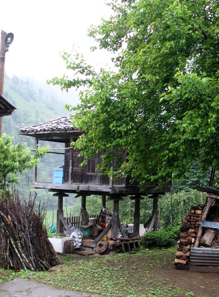Türkiye/Artvin/ Arhavi Ulukent Köyü(Pilarget)2013/Serender