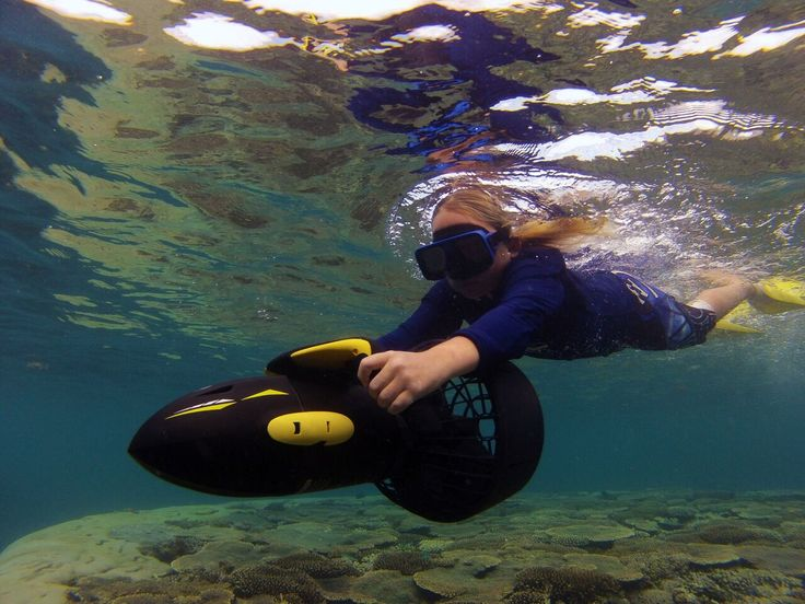 Ningaloo Kayak Adventures in Coral Bay are TAWKer Supporters and offering 10% when you mention you are a TAWKer :)