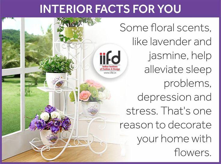 Interior Design Facts 51 best interior designing images on pinterest | interior
