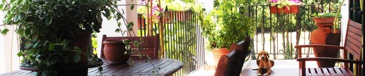 Veranda per colazioni all'aperto