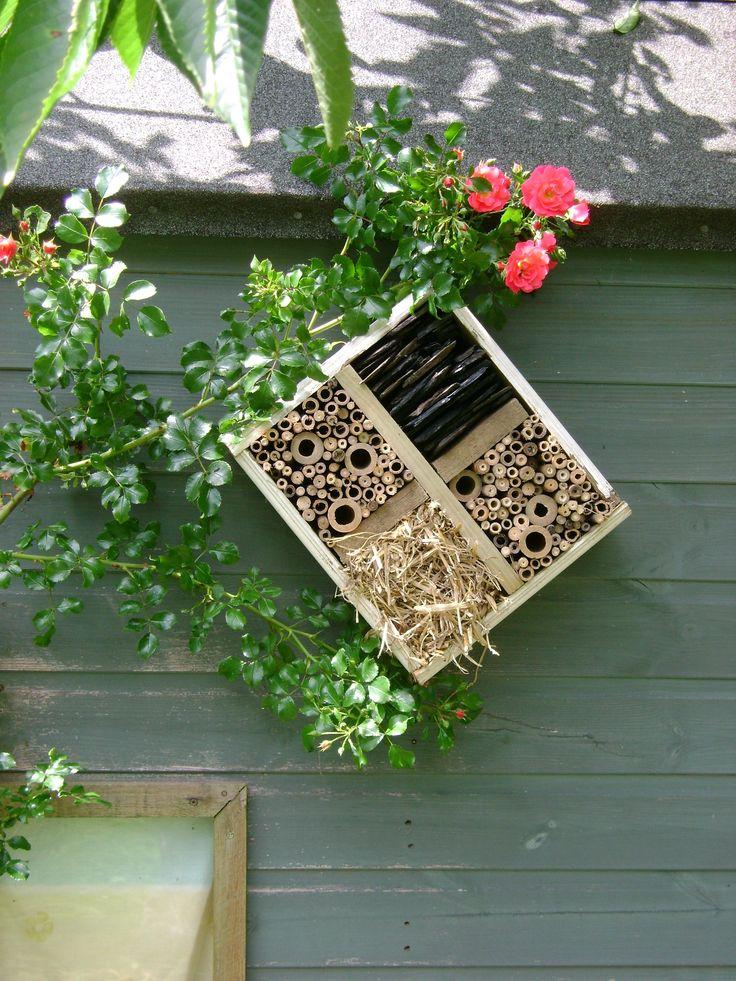 Comment réaliser un abri pour les insectes ?    Les explications sur le site.