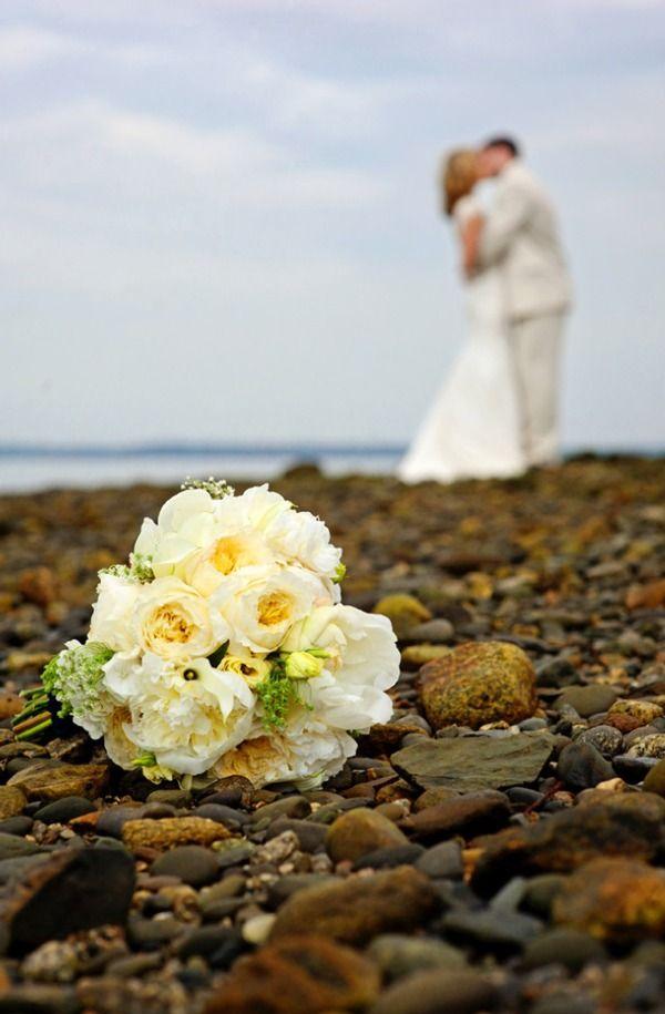 Photos on the rocky Maine coast. #pinBellaFigura