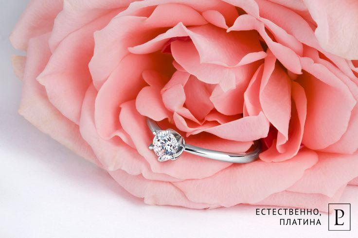 Утонченное помолвочное кольцо из платины с бриллиантом подчеркнет красоту её рук.  #ring  #brilliant #jewelry #jewellery  #wedding #8марта  #platinum   #PlatinumLab #помолвочноекольцо #кольцо #rings #forher #present  #cute #помолвка #кольцодляпредложения #weddingring