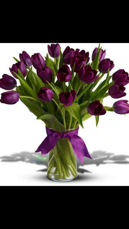 Bouquet de tulipes violets