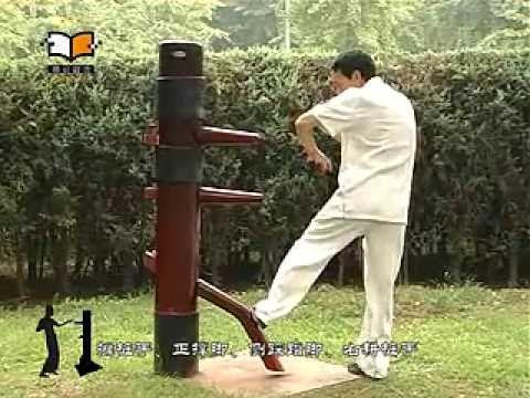 Wing Chun Advanced Techniques - Biu Jee, Muk Yan Jong, Baat Jaam Do and ...