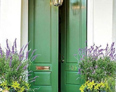 Awesome Front Door Potted Plant 1 Best Front Door Potted Plants Colorful Front  Doors Thatll