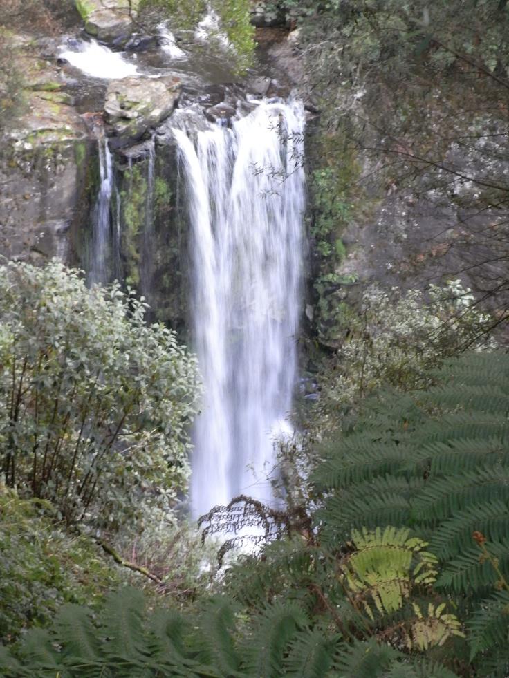 Hopetoun Falls, near Apollo Bay