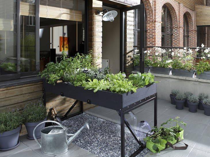 128 best Au jardin images on Pinterest Outdoor gardens, Potager - que faire en cas d humidite dans une maison