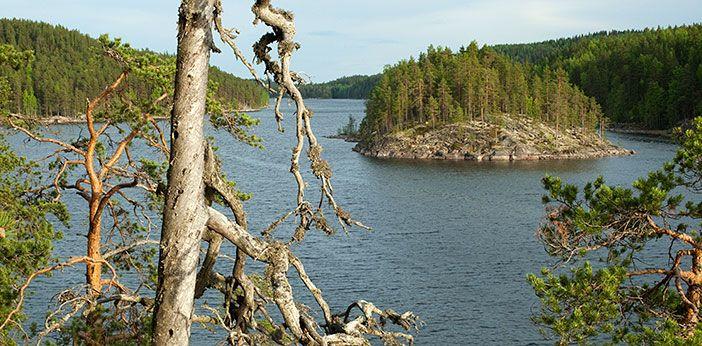 Koloveden kansallispuisto - Luontoon.fi