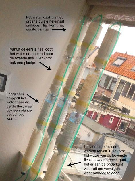 het aanleggen van een windowfarm (raamtuintje)