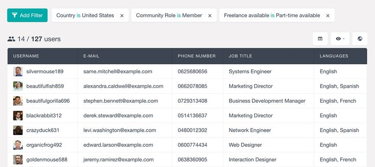 filter ultimate member fields to export with Users Insights custom WordPress users export