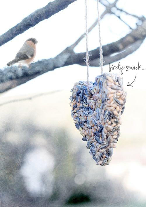 Nu de dagen weer kouder worden, kunnen de vogels wel wat extra's gebruiken. Om zelf te maken met (kokos)vet, (koek)vormpjes en vogelzaad.