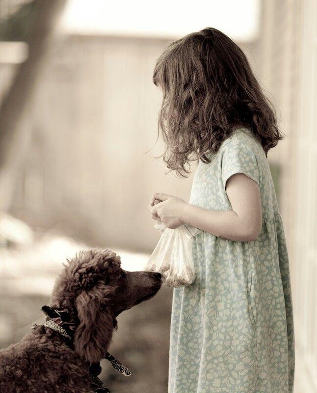 Pes,najlepší priateľ človeka