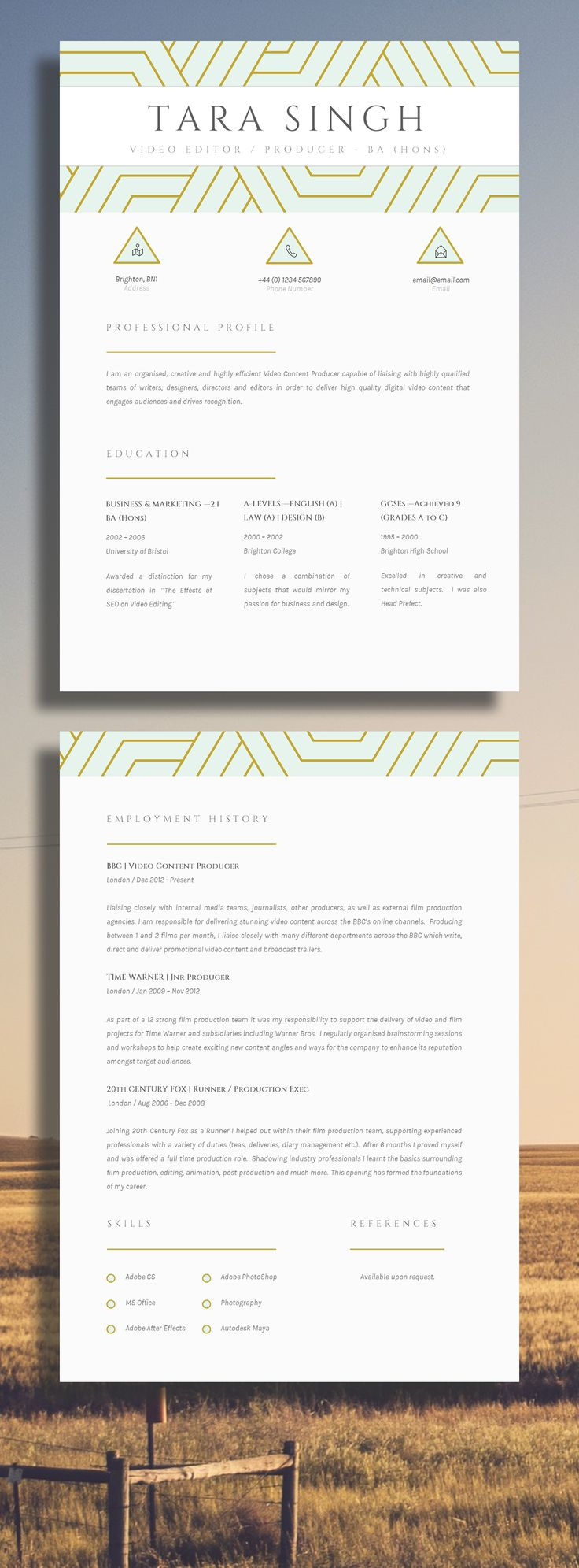 An elegant and creative CV design gives a professional approach to any job application.  Wow my future employer!