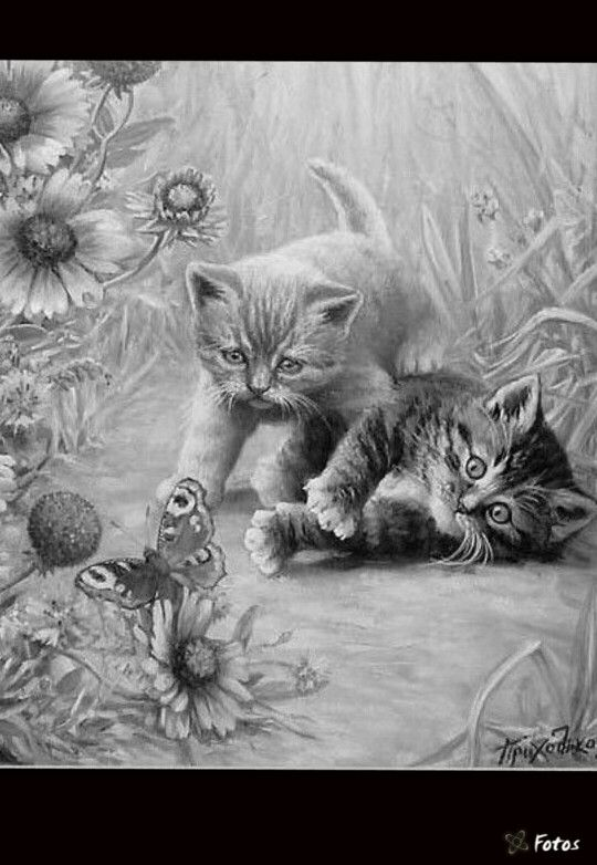 606 Best Grayscale Pics Images On Pinterest Drawings