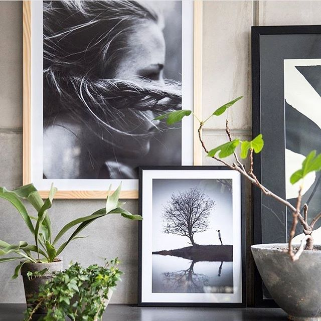 Colorful photo wall with motifs from Printler, the marketplace for photo art, interior design by @purplearea1 at instagram. Wooden frames and plants goes well together with black and white photography. https://printler.com/sv/