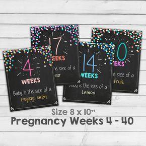 Semanas de embarazo embarazo pizarra semana por Anietillustration