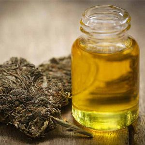CBD Oil Benefits: 10 of the Most Widespread Health Benefits
