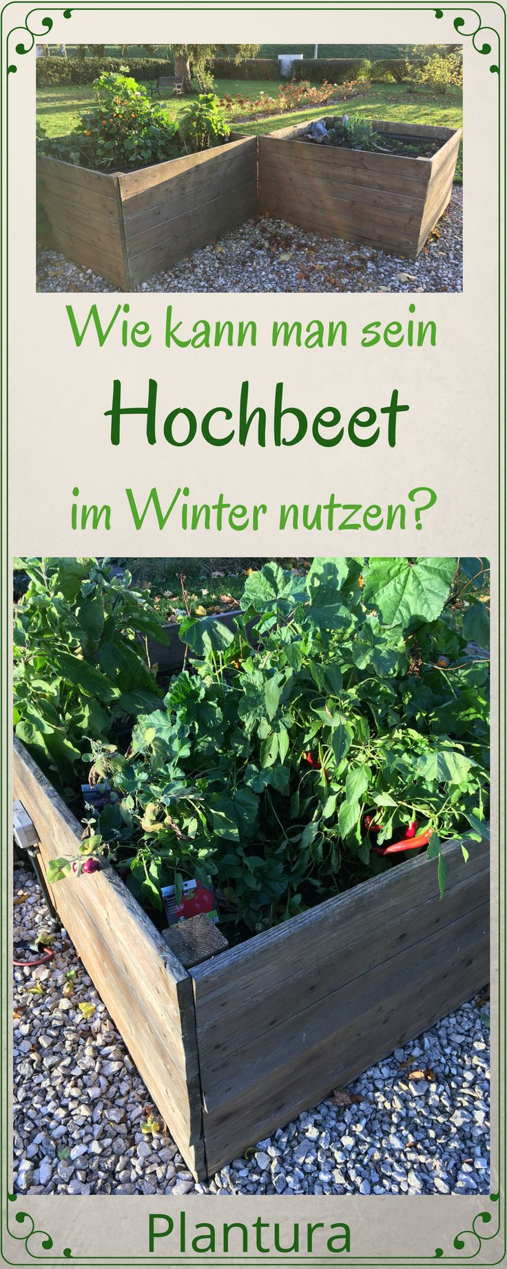 Wie kann man sein Hochbeet auch im Winter nutzen?
