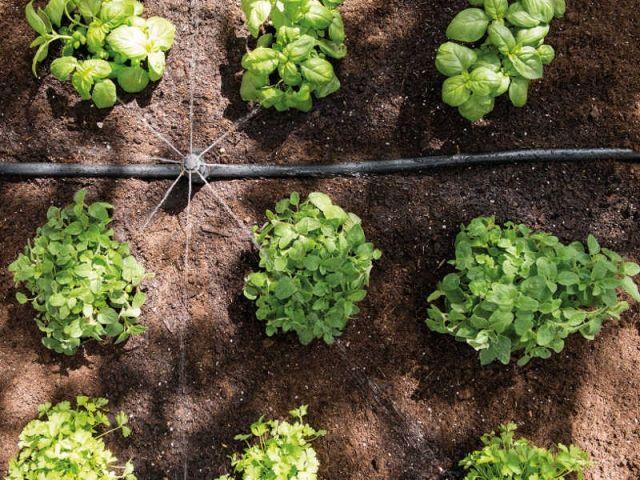 Les 25 meilleures id es concernant syst me d irrigation sur pinterest syst - Systeme irrigation jardin ...