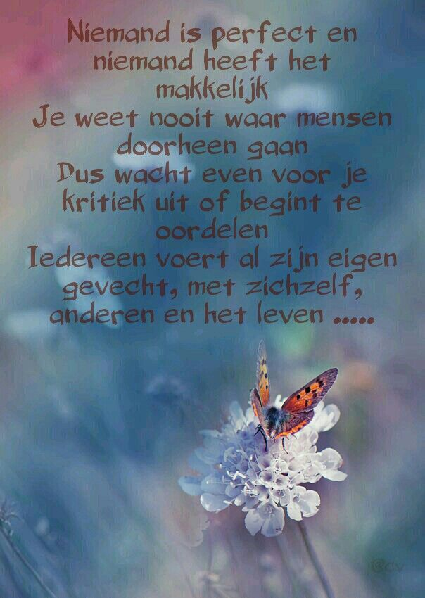 Niemand is perfect ...