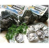 Live In-Shell Kumamoto Oysters (4 dozen)