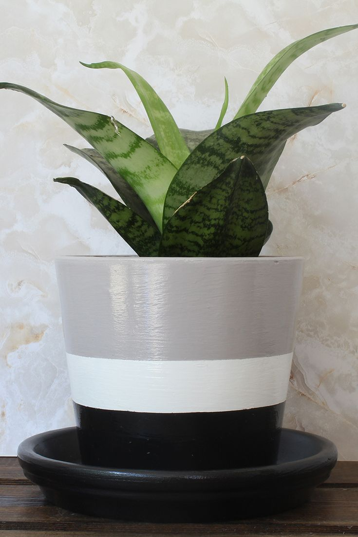 Harmony Plant Pot Mother Nature Collection In 2020 Painted Flower Pots Small Flower Pots Mother Nature
