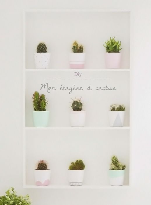 diy étagère à cactus Ikea